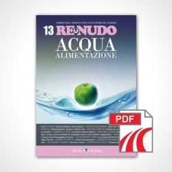 RE NUDO 13 Pdf