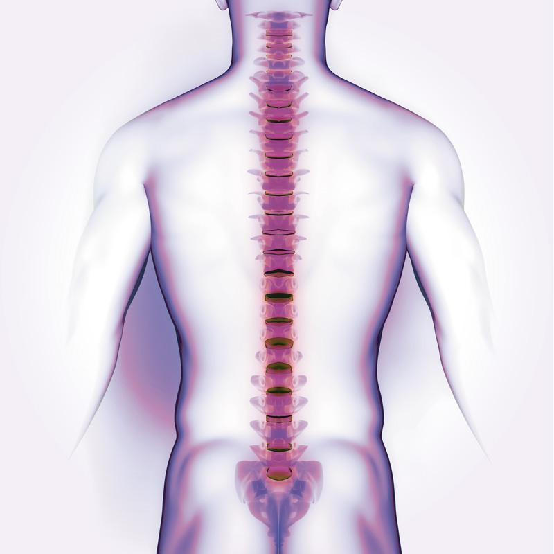 Chiropratica: corpo, mente, spirito